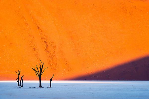 Deadvlei Sossusvlei Namibia (9)