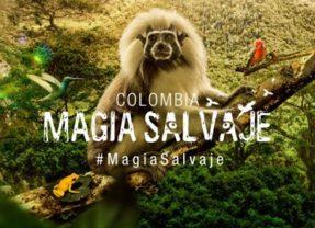 Colombia Magia Salvaje