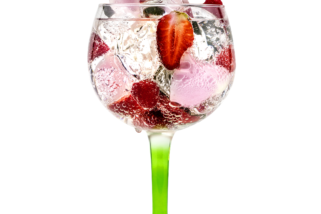 April 9th National Gin & Tonic Day!
