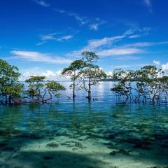 Andaman and Nicobar Islands – India