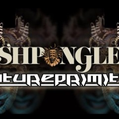 Win Tickets to Shpongle with Phutureprimitive at the Fonda Theatre on March 14th!