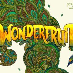 Wonderfruit in Thailand Adds Lianne La Havas, Shura, Stephan Bodzin + YokoO to lineup