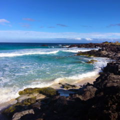 Spotlight on the Island of Hawai'i