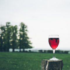 Can Wine Truly Be A Guilt-Free Beverage?