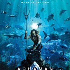 Aquaman 2018 International Coastal Cleanup Initiative
