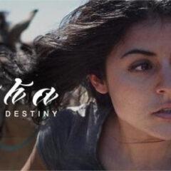 Pocha – Manifest Destiny